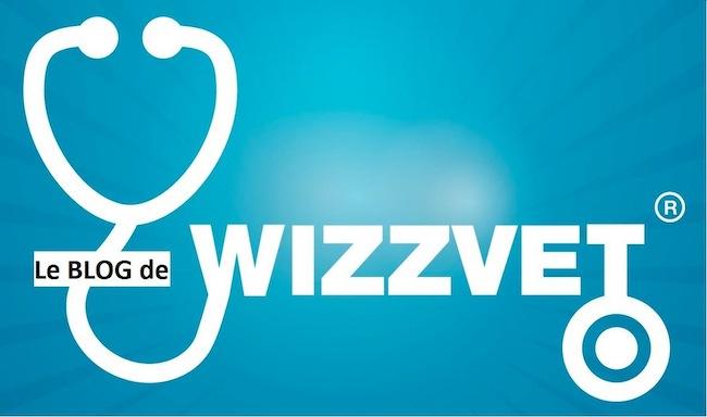 wizzvet