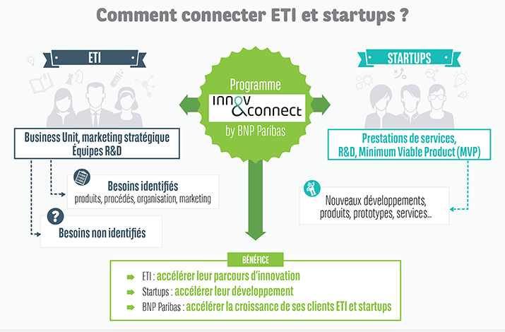 Infographie-InnovConnect-extract