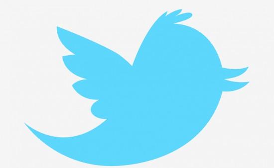 twitter logo vignette
